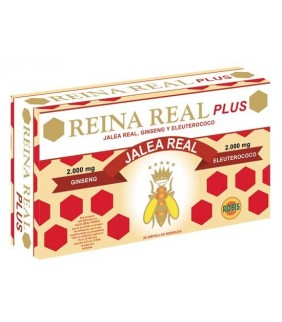 QUEEN REAL PLUS 20 AMP 10ML